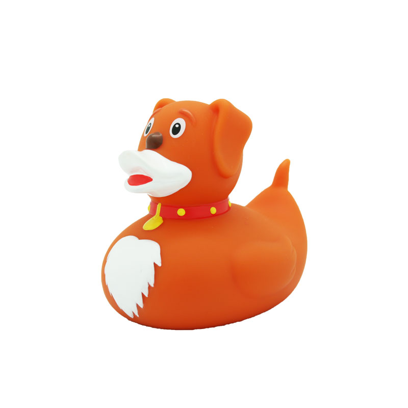 dog rubber duck