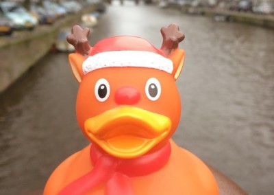 Reindeer Rubber Duck Canal